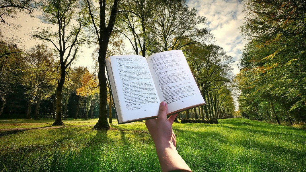A book held open in front of trees